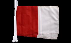 Fahnenkette Irland Westmeath - 30 x 45 cm