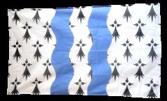 Flagge Frankreich Ille-et-Vilaine