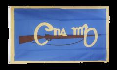 Flagge Irland Cumann na mBan